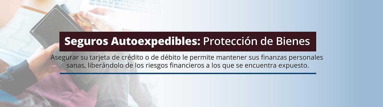 seguros autoexpedibles: bienes